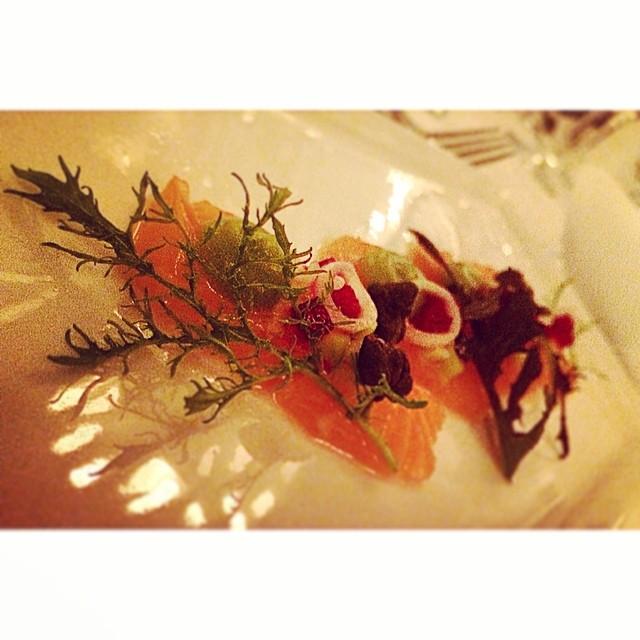 Salmon sashimi, Kyoto baby peach purée, Beetroot and horseradish salsa. Nasturtium and white ponzu. Dish by Chase Kojima. #bocusedoraustralia